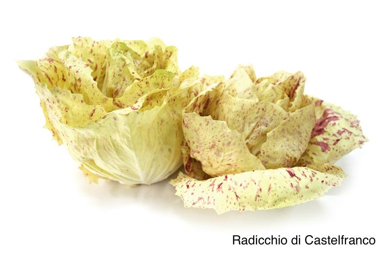 Prodotti locali-Radicchio Rosso di Treviso IGP e Variegato di Castelfranco IGP