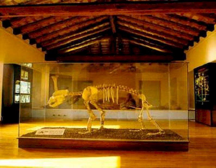 Crocetta del Montello-Museo Civico La Terra e l'Uomo