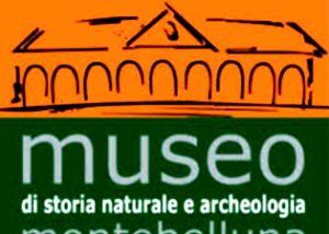 Montebelluna-Museo Storia Naturale ed Archeologico