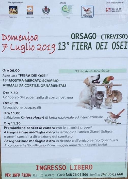 Orsago-13° Fiera dei Osei