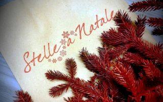 Cison di Valmarino-Stelle a Natale