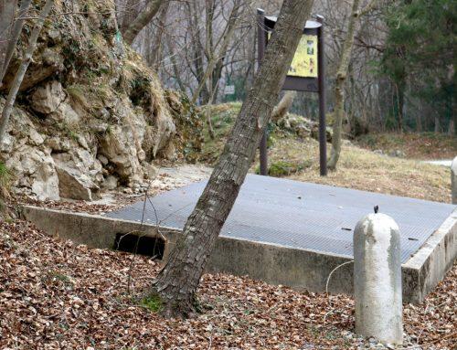 Grotta del Ciclamino